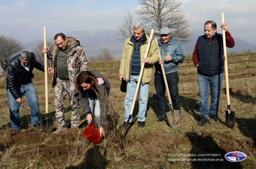 5600 Trees Planted in Dilijan National Park