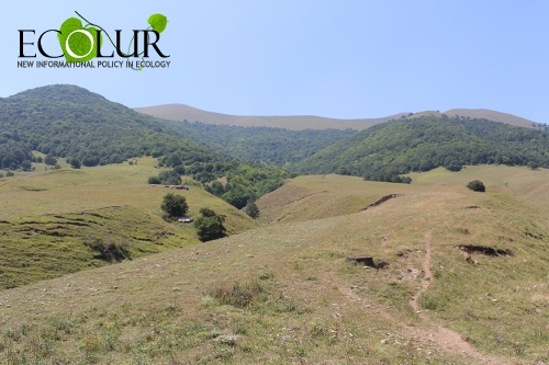 Shekaghbyur Mining Area Not Included in ArmForest Forest Fund