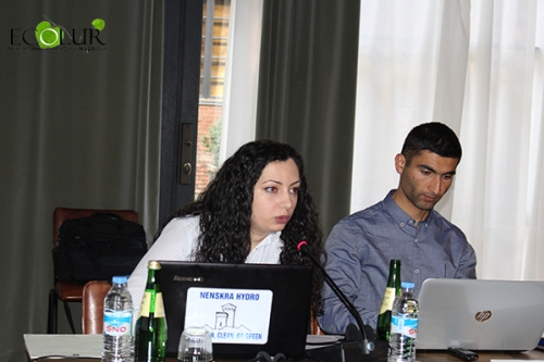 Energy Development in Armenia: Public Assessment