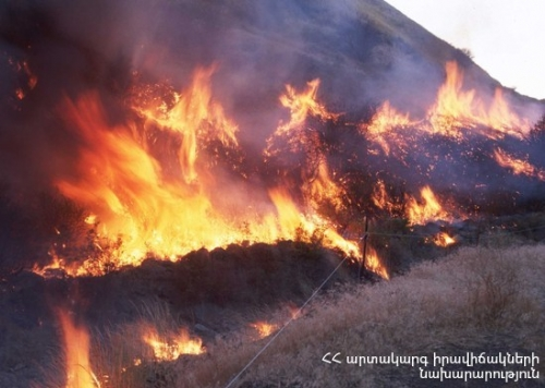 Around 50 Ha of Grass-Covered Area and 40 Junipers Burnt Down in Amulsar Area