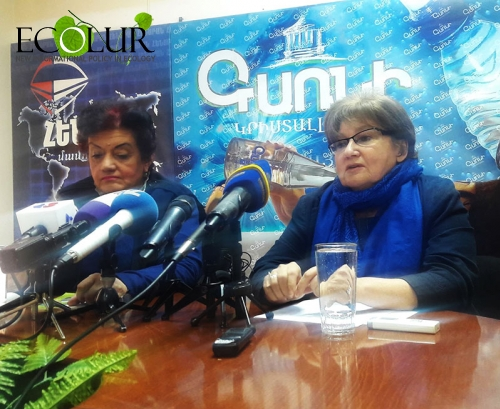 Local Population and Government Subject to Manipulations: Inga Zarafyan on Closedown of Alaverdi Copper Smelting Plant