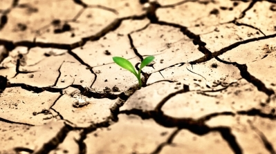 Armenian Government Intends To Prevent Soil Degradation