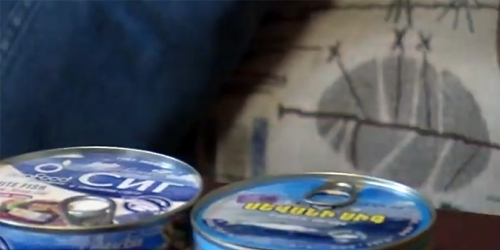 How Cans with Whitefish Appeared in Market When Industrial Fishing of Whitefish Banned?