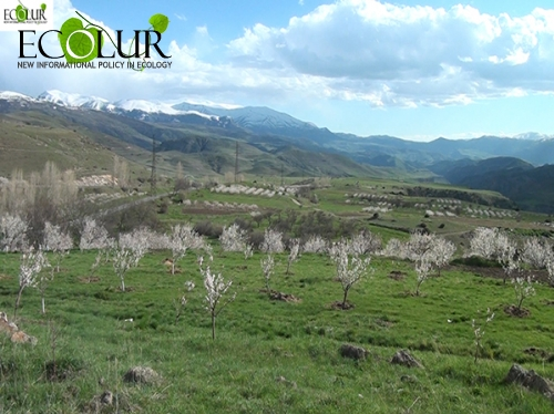 Some Gndevaz Villagers Stated They Are Ready to Return Money They Received from Lydian Armenia Company for Their Land Areas
