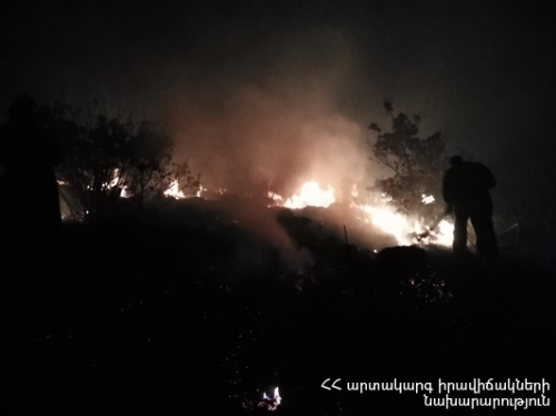 Pine Trees Burnt Down Because of Fire Broke out in Tashir Forestry Enterprise