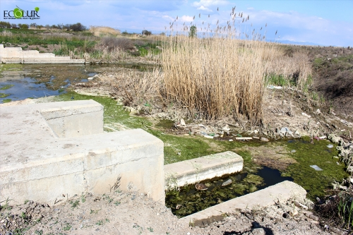 Certain Residents Deprived of Opportunities of Land Cultivation and Making Money Because of Violation of Their Right to Water in Artashar Community, Armavir Region