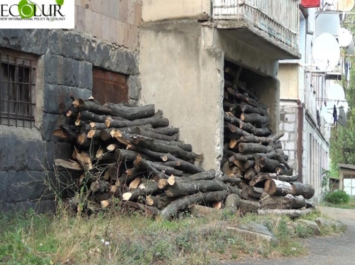 Insufficient Reserves of Firewood for Near-Forest Community Residents in Forests of Armenia