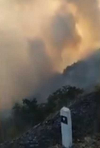 Forests on Way from Shikahogh to Meghri on Fire: Alarm Signal