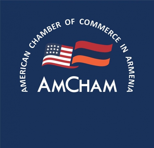 AmCham in Armenia Called for RA Prime Minister Nikol Pashinyan for Amulsar Case