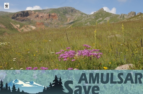 WWF Armenia Applying to Armenian Government Demanding to Annul EIA Issued to Amulsar