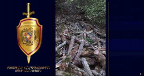 Administrative Head of One of Residential Areas in Syunik Region Illegally Felled Down Trees Together with His Sons