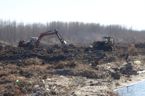 Around 112,4 Million AMD Allotted from State Budget for Cleaning of Near-Forest Areas