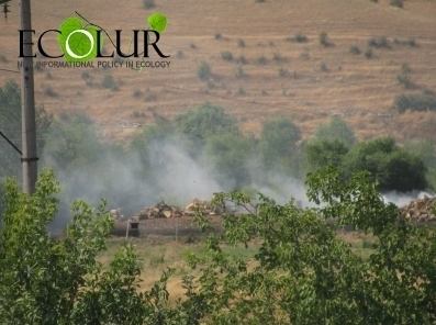 Has  Tavush Charcoal Production Problem Solved?