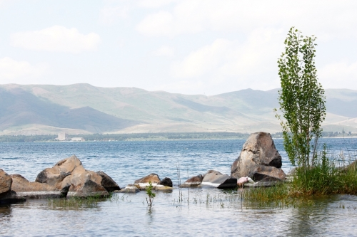 16 Ha of Lake Sevan Littoral Area Cleaned in First Quarter 2020